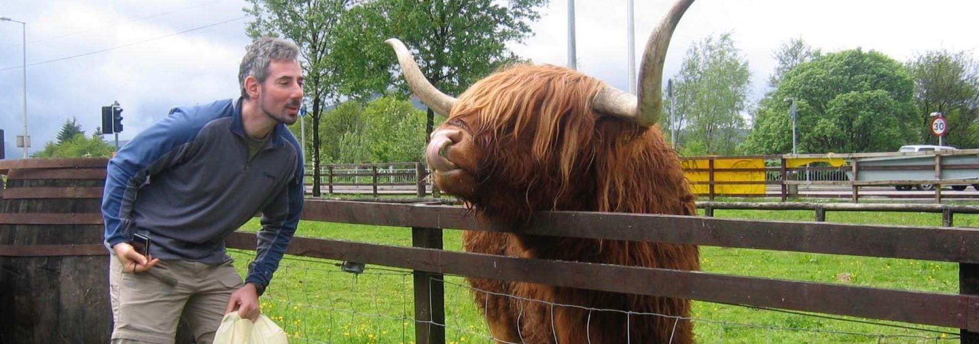 Hamish the Highland - that's the bull not Richard.