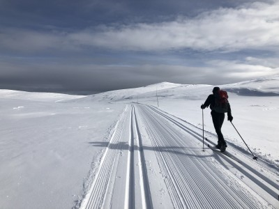 Along the Hallingdal Track Winter 2019